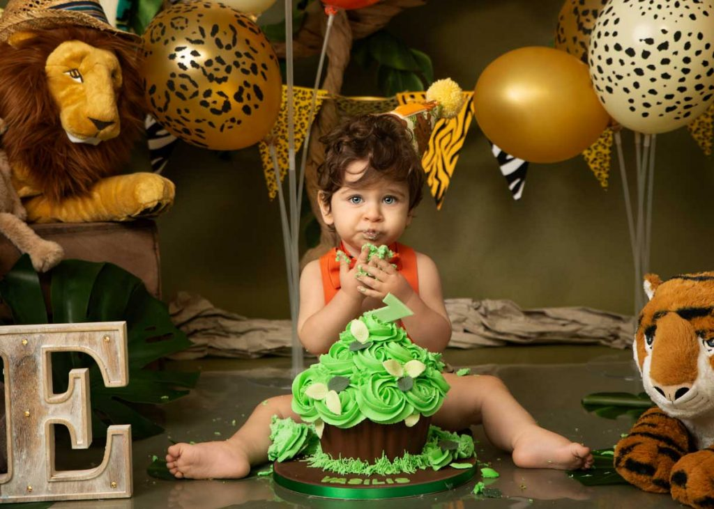 safari cake indoor cake smash photography