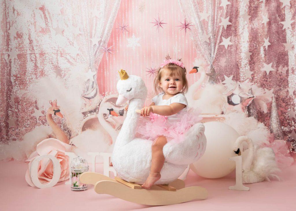 swans and ducks photoshoot