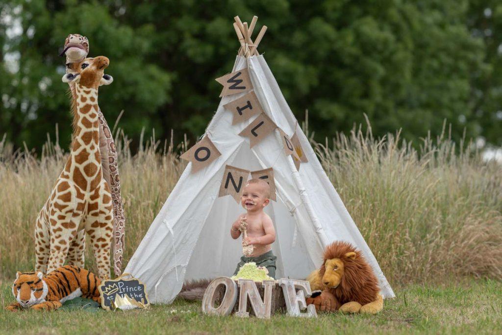 outdoor tent teepee first birthday safari photoshoot cake smash