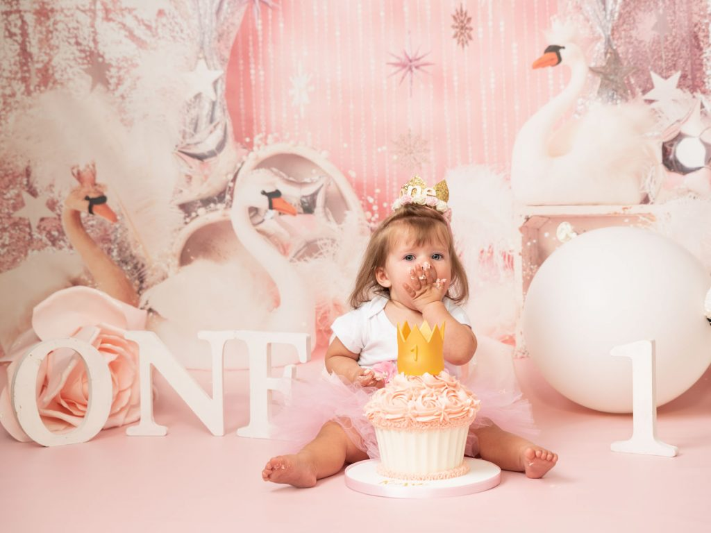 swans and royalty cake smash photography